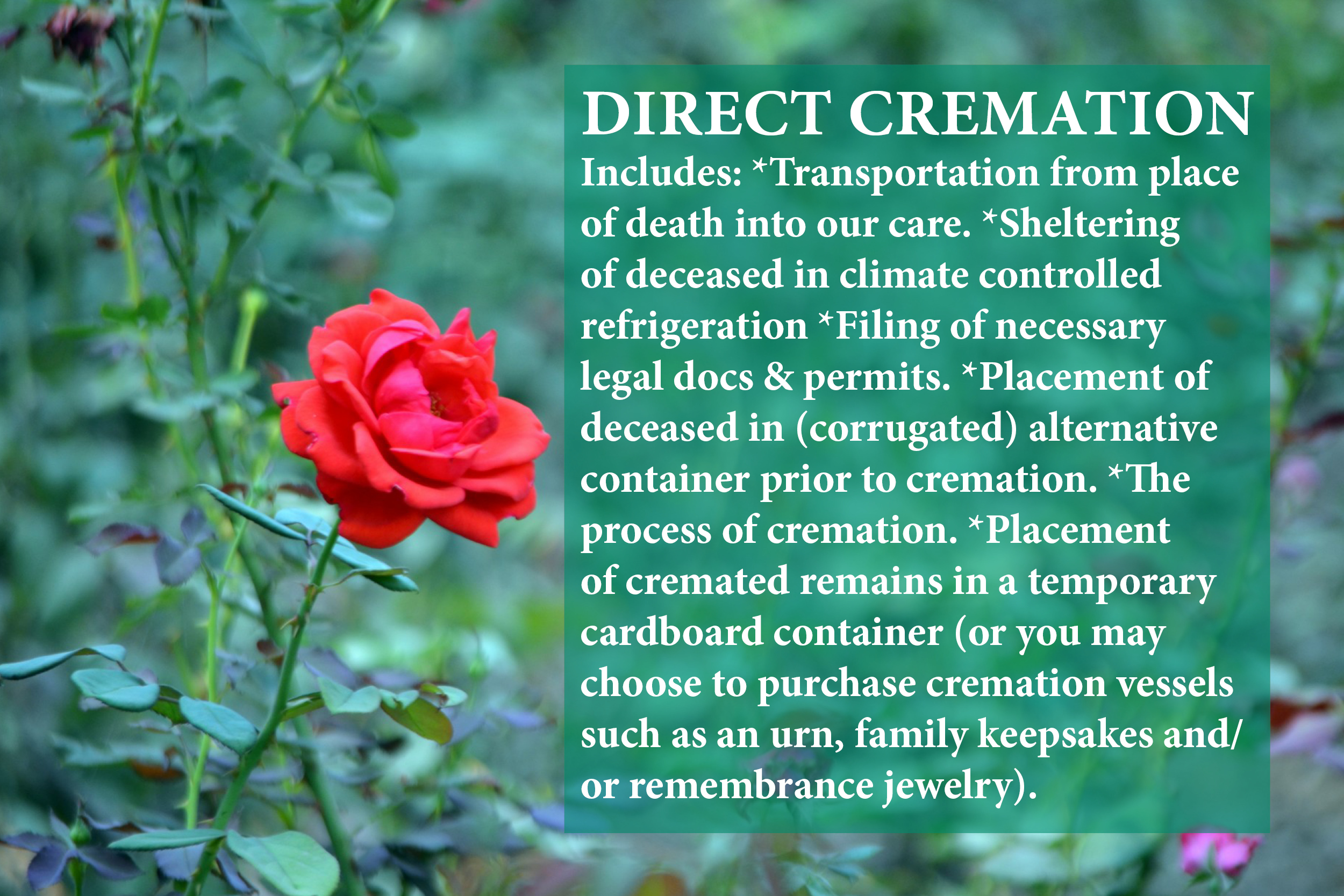 Direct cremation